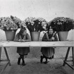 Продавщицы цветов на Рамбле. Барселона, ок. 1950
